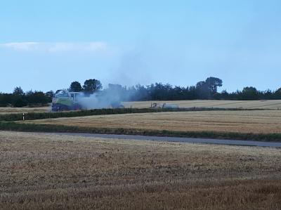 Vorschaubild zur Meldung: Ein Flächenbrand konnte durch das schnelle und gut überlegte Handeln verhindert werden!