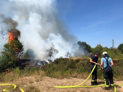 Foto zur Meldung: Zweiter Waldbrand innerhalb einer Woche
