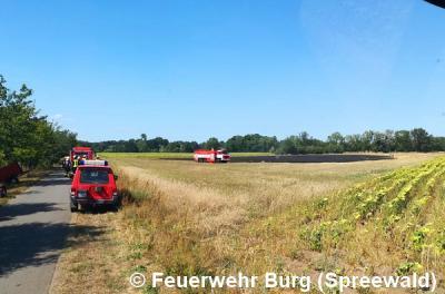 Vorschaubild zur Meldung: Einsatz Nr. 101/2018 - Flächenbrand