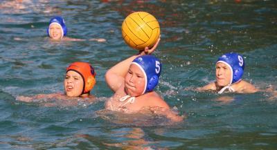 Foto zur Meldung: Wasserball - U12 gewinnt Bronze in Netzschkau