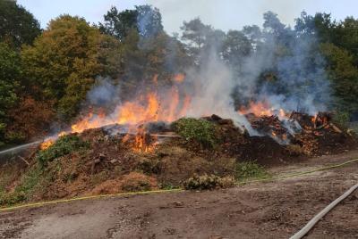 Vorschaubild zur Meldung: Aufwändiger Brand am Ostfriedhof