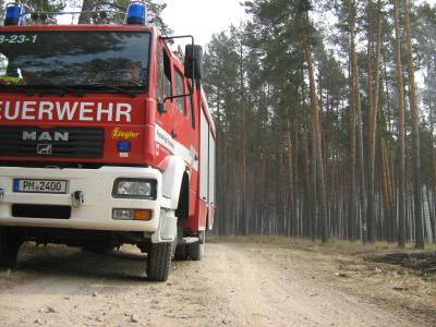 Foto zur Meldung: Waldbrand bei Frohnsdorf und Klausdorf