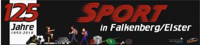 Vorschaubild zur Meldung: Impressionen von der 125 Jahre Sport in Falkenberg/Elster Festveranstaltung
