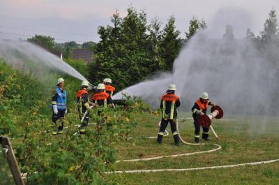 Foto zur Meldung: Flächenbrand bei gemeinsamer Übung bekämpft