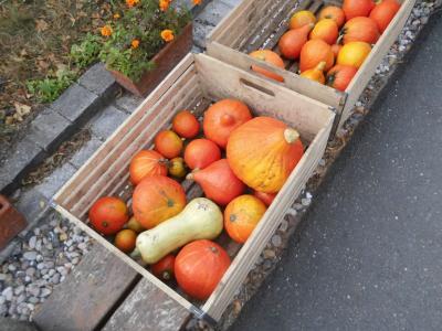 Foto zur Meldung: Hurra... Herbstferien!