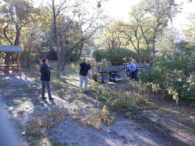 Vorschaubild zur Meldung: Herbstputz in Jerchel