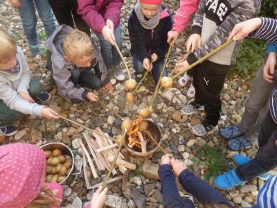 Vorschaubild zur Meldung: Woche der Gesundheit und Nachhaltigkeit - Kartoffeltag der Klasse 1c
