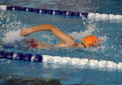 Foto zur Meldung: Schwimmen Kurzbahn-Bezirksmeisterschaften in Görlitz