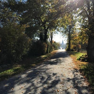 Foto zu Meldung: Neukalener Herbst