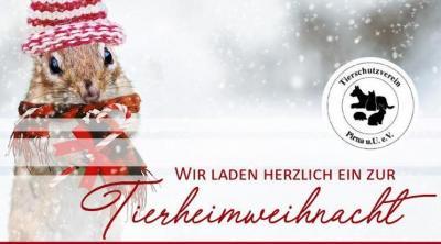 Tierheim Weihnacht
