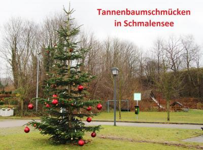 Foto zur Meldung: Tannenbaumschmücken in Schmalensee am 1. Dezember