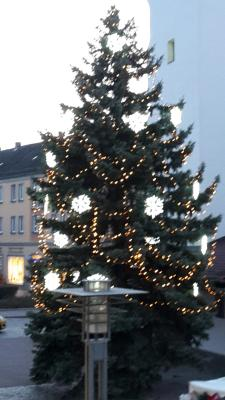 Vorschaubild zur Meldung: Kein beschlossener Haushalt. Aber: Fürstenwalder sollen nicht ohne Weihnachtsbäume bleiben