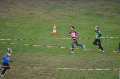 Vorschaubild zur Meldung: Crossläufer erkämpfen sich drei Medaillen