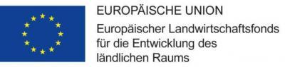 """Vorschaubild zur Meldung: Ersatzneubau und Gestaltung der Außenanlagen der Kita """"Themesknirpse"""" im OT Dubro"""