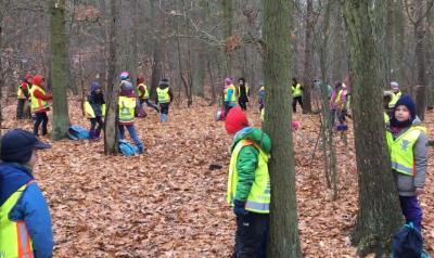 """Vorschaubild zur Meldung: Projet """"Forêt"""" - Classe 1b"""