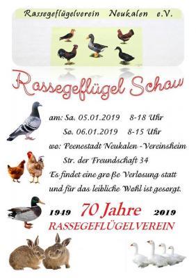 Foto zur Meldung: Rassegeflügelschau 2019