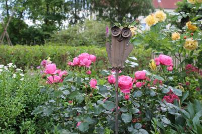 Foto zur Meldung: Von Schnittkurs und Pflanzenbörse  bis Laga-Beteiligung und Rosentaufe