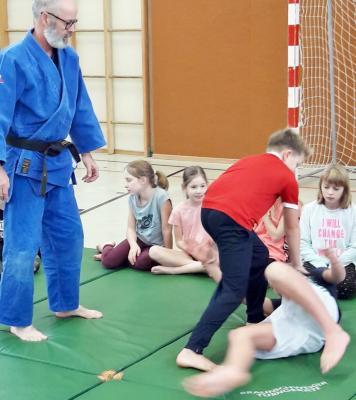 Vorschaubild zur Meldung: Judotag
