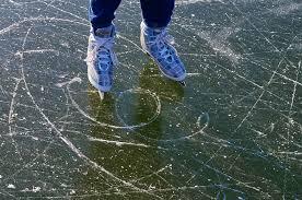 Foto zur Meldung: 2. Schulfahrt: Eislauf
