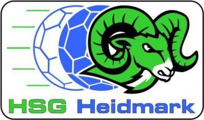 Vorschaubild zur Meldung: Inklusions-Handball-Projekt
