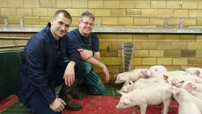 Bürgermeister Giebler im Schweinestall