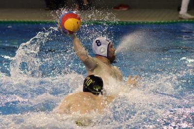 Vorschaubild zur Meldung: Erfolgreicher Wasserball-Samstag für die Lok-Männer