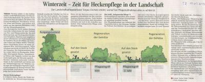 Artikel Torgauer Zeitung