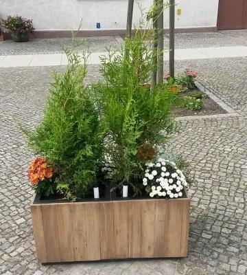 Vorschaubild zur Meldung: Verfügungsfonds Stadtkern Wusterhausen