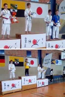 Foto zur Meldung: Landesmeisterschaften im Karate