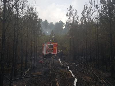 Einsatz der Freiwilligen Feuerwehr Nauen bei Treuenbrietzen im August 2018 (Fotos: Freiwillige Feuerwehr Nauen)