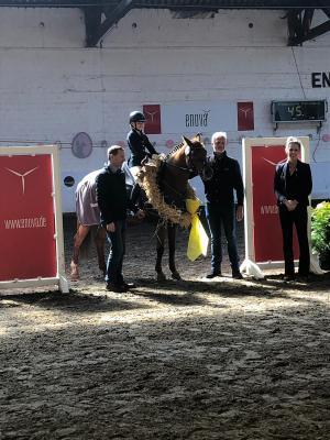 Vorschaubild zur Meldung: Maike Noormann gewinnt den Enova-Dressurcup