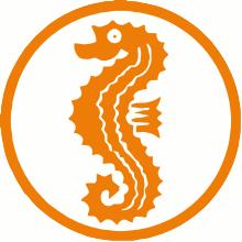 Vorschaubild zur Meldung: Seepferdchen