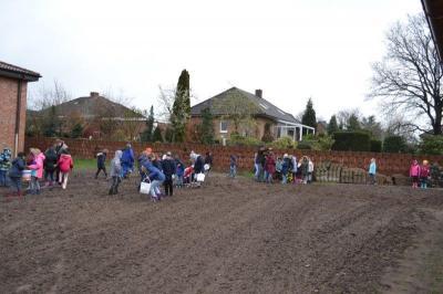 Vorschaubild zur Meldung: Kartoffelpflanzen mit der Grundschule