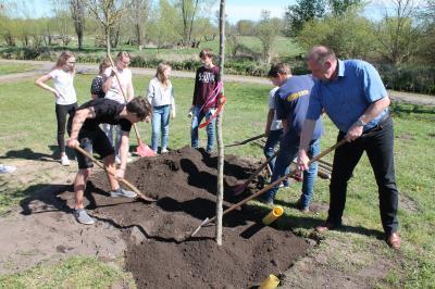 """Vorschaubild zur Meldung: Marcus-Schüler pflanzen den """"Baum des Jahres"""""""