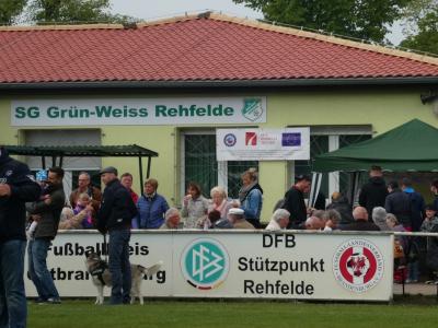 Foto zur Meldung: Das war das Sport- und Volksfest Rehfelde 2019