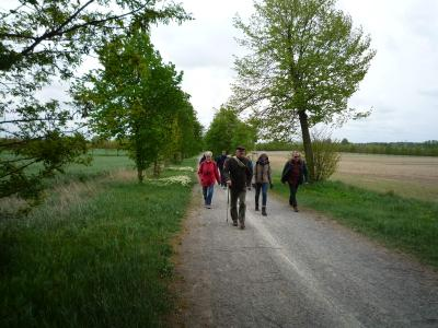 Foto zur Meldung: 1. Fontane-Wanderung: von der Historische Mühle Potsdam nach Schloss Paretz