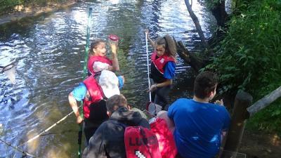 Foto zur Meldung: Wassercamps im Wildpark Eekholt: Anmeldungen ab sofort möglich!