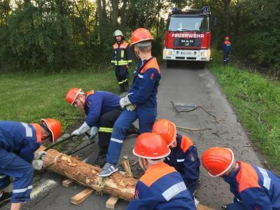 Die Jugendfeuerwehr der Freiwilligen Feuerwehr der Stadt Calau veranstaltet am 17. und 18. Mai den Berufsfeuerwehrtag. Foto: privat