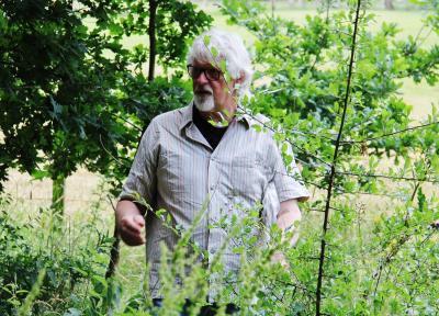 Dierk Hamann führt durch den Wald