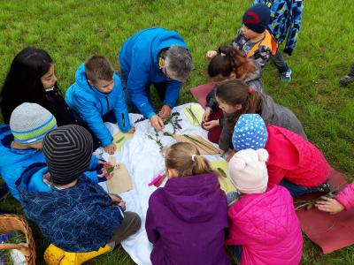 Foto zur Meldung: Lerngang Wiese in Enzberg