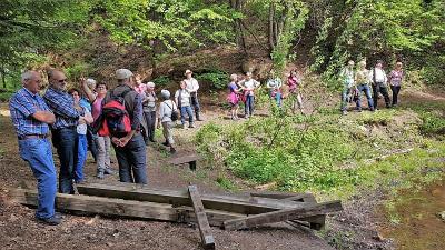 Foto zur Meldung: Frühjahrswanderung der Moosbacher Gartler führte nach Runding