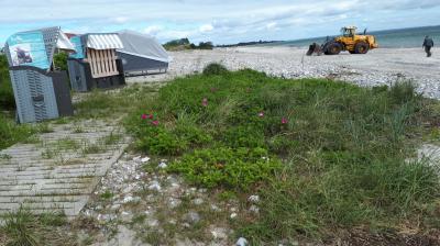 Die Strandsaison kann beginnen, hier beim Schlaf- und strandkröben für Geh-gehandikapte