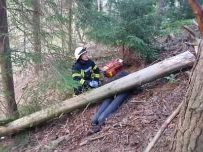 Vorschaubild zur Meldung: 03.05.2019 - Ausbildungsdienst zum Thema Forstunfälle