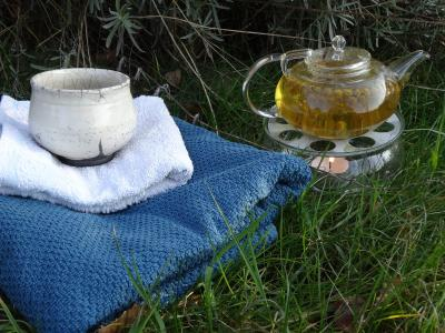 Foto zur Meldung: Naturpark präsentiert Garten querbeet – Wellness für die Sinne