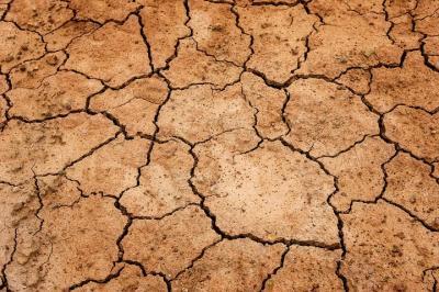 Foto zur Meldung: Die Wüstenflächen wachsen