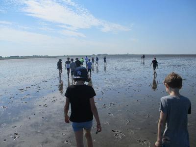 Sie hätten noch stundenlang weiterlaufen können: Die Kinder der 3.und 4.Klasse genießen die Wattwanderung