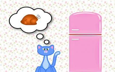 Vorschaubild zur Meldung: -SOS- Wir benötigen noch immer ganz dringend Kitten-Nassfutter und Aufzuchtmilch.