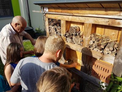 Vorschaubild zur Meldung: Bienen sind fleißige Tiere!