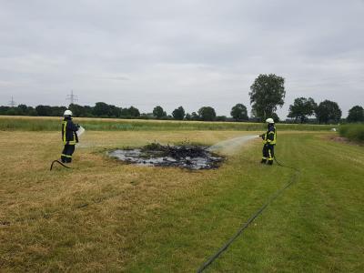 Vorschaubild zur Meldung: Einsatz Nr. 13 - Flächenbrand in Stemwarde / A24