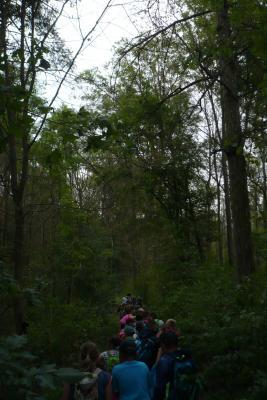 Vorschaubild zur Meldung: Waldführung 3. Klassen